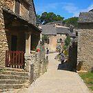 Quaint old village by daffodil