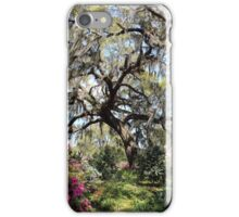 Beauty In The Trees iPhone Case/Skin