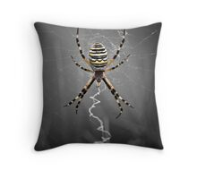 Golden Banded Garden Spider Throw Pillow