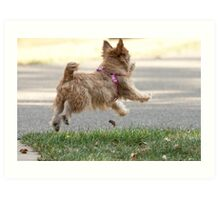Joy is Jumping for a Ball Art Print