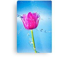Tulip Flower Metal Print