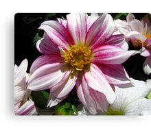 Flowers for Breast Cancer  Canvas Print