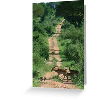Crossing the path Greeting Card