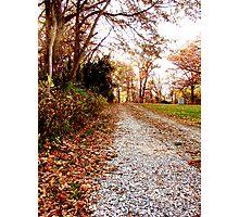 Harris Cemetary Path Photographic Print