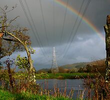 Electric Rainbow  by Rob Hawkins