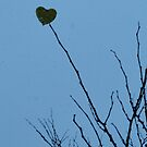 Heartbeat by Melodyone