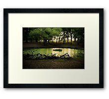 Green pond at Richmond Park Framed Print