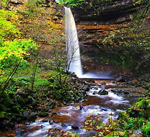 Hardraw Force by Paul Bettison