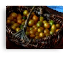 Basket of tomatoes Canvas Print