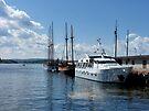 Docked in Oslo Harbor by Lucinda Walter