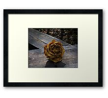 Twilight Rose Framed Print