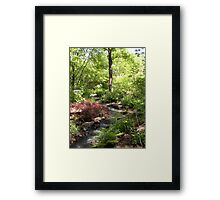 A Favorite Garden Spot Framed Print
