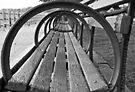 Going Around in Circles  by John  Kapusta