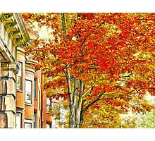 South End Photographic Print