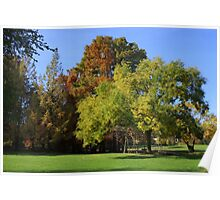 A sunny autumn morning Poster