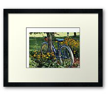 Flowers, country scene, old bicycle Framed Print