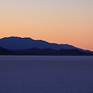 Bonneville Last Light by Leslie Guinan