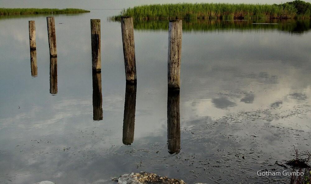 Louisiana Bayou by Dreebs