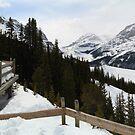 Snowy view by zumi