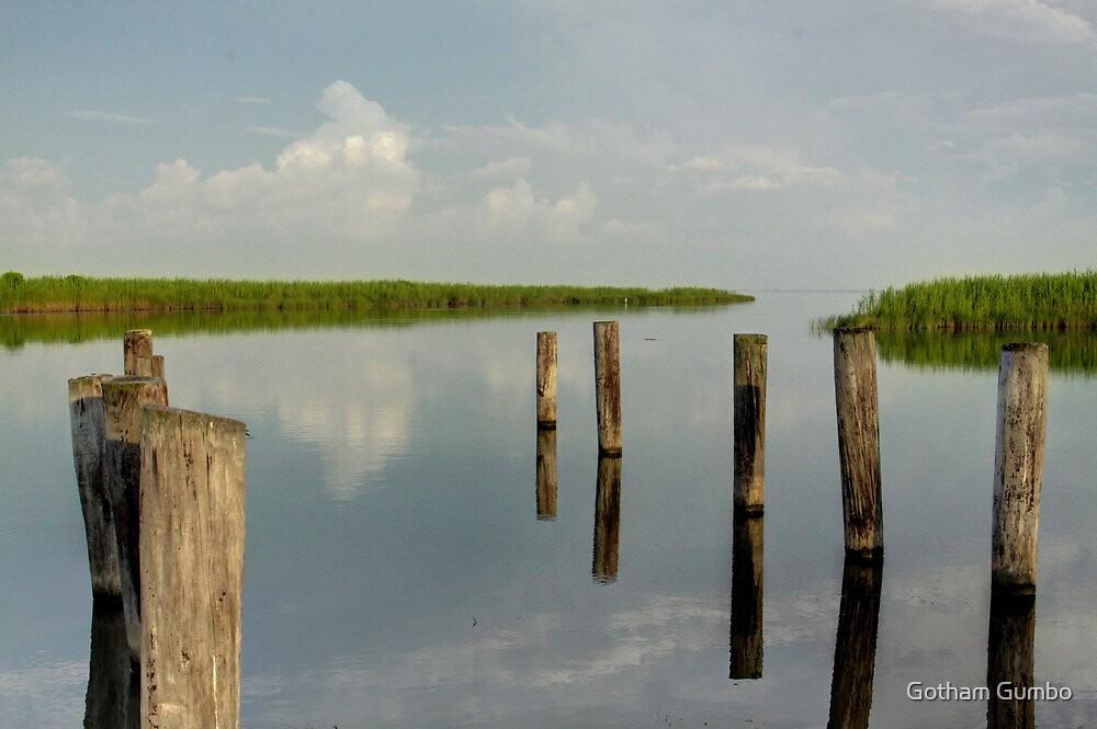 Louisiana Bayou 3 by Dreebs
