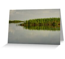 Louisiana Bayou 4 Greeting Card