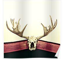 moose trophy Poster