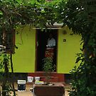 Postcards from Kerala: The happy house by bambiisme
