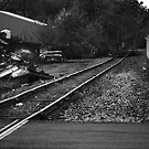 Ghost On The Tracks by VanLuvanee21
