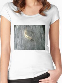 Hairy Caterpillar Women's Fitted Scoop T-Shirt