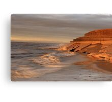 OUT GOING TIDE Canvas Print