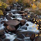 Rushing Waters by BekkaLynn