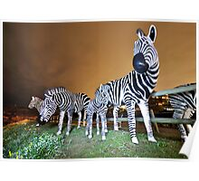 Zebras on our Patch Poster