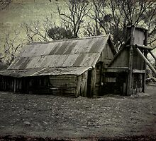 Wallace Hut - Grunge by pennyswork