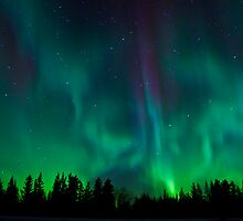 Wild Night Auroras by peaceofthenorth