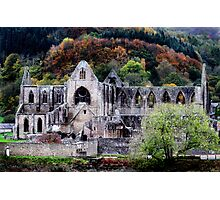 Autumn At Tintern Abbey  Photographic Print