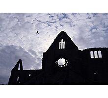Tintern Abbey Silhouette  Photographic Print