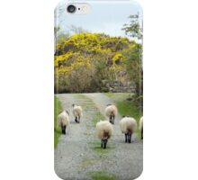 Roundstone rush hour iPhone Case/Skin