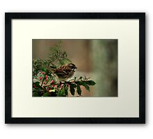 Good Cheer for the Holidays Framed Print