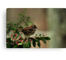 Good Cheer for the Holidays Canvas Print