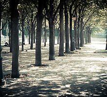 Paris0011 by RicharD Murphy