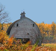 Old Framed Barn by Larry Trupp