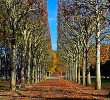Sceaux park... by jean-jean