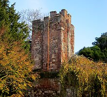 Athelstan's Tower, Exeter by buttonpresser