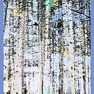 Light Up The Trees iPhone Case by Judi FitzPatrick