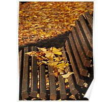 Bench Leaves Poster