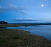 Moonlight on the Marsh by AlexanderFord