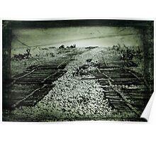 Shingle Tracks Poster
