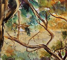 Murchison's Gap, Strath Creek, Vic Australia by Margaret Morgan (Watkins)