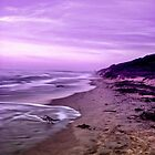 Purple. by Tyhe  Reading