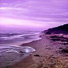 Purple. by Tyhe  Reading